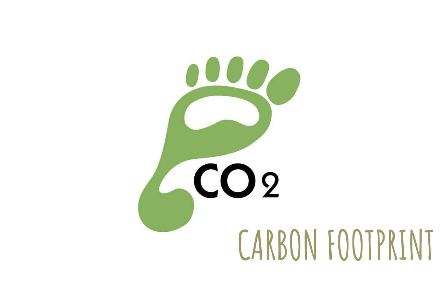 Carboon Footprint
