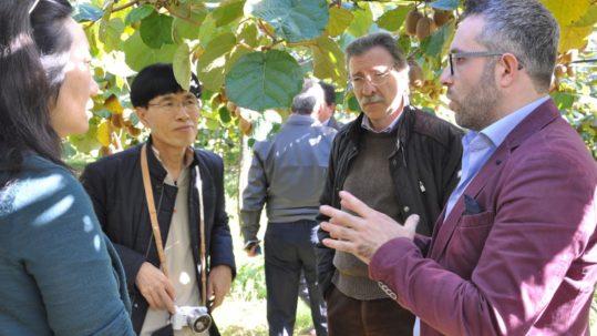 Salvatore Pecchia (giacca viola) con gli operatori cinesi nei frutteti del Metapontino