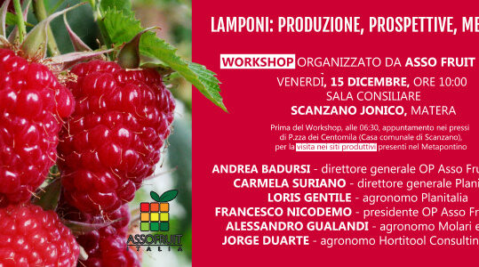 Invito workshop del 15 dicembre 2017 a Scanzano Jonico